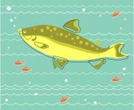 Stor fisk Royaltyfria Foton