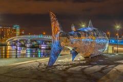 Stor fisk, Belfast som är nordlig - Irland Royaltyfria Bilder