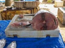 Stor fisk för tonfisk i marknad Arkivbilder