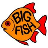 Stor fiskbakgrund royaltyfri illustrationer