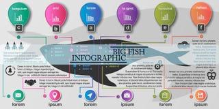 Stor fiskinfographics royaltyfri illustrationer