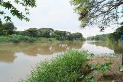 Stor flod i en colombiansk skog Arkivfoton