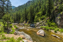 stor flod thompson Arkivbilder