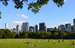 Stor gräsmatta av Central Park Fotografering för Bildbyråer