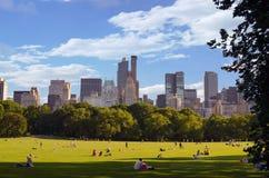 Stor gräsmatta av Central Park Arkivbild