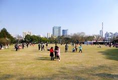 Stor gräsmatta inom Zhongshan parkerar royaltyfria foton