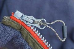 Stor grå vinande på röd grön kläder arkivbilder