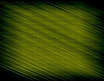stor grön textur Arkivfoto
