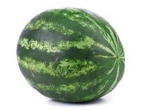 Stor grön vattenmelon Arkivbilder
