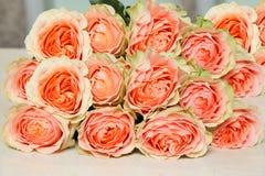Stor grupp av ovanliga variationer av rosor Arkivfoton