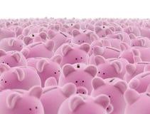 Stor grupp av piggy grupper Royaltyfri Bild
