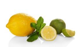 Stor gul citron, limefrukt och mintkaramell royaltyfria bilder