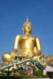 Stor guld- Buddha staty Arkivfoton