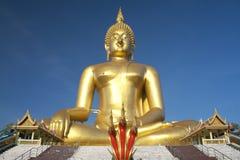 Stor guld- Buddhastaty Royaltyfri Fotografi