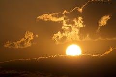 Stor härlig soluppgång med fåglar som flyger in mot resningsolen Arkivfoto