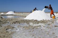 Stor hög av Salt Arkivbilder