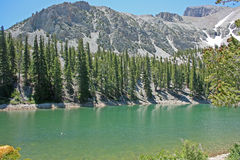 Stor handfatnationalpark, Nevada arkivfoton