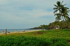 stor hawaii ö Arkivfoto