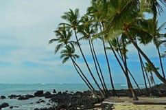 stor hawaii ö Royaltyfria Foton