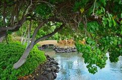 stor hawaii ö Arkivbild