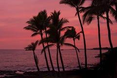 Stor ö Hawaii för Kona solnedgång Arkivfoton