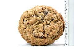 Stor hemlagad choklad Chip Cookie Arkivfoton