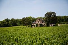 Stor herrgård som omges av druvavinrankor nära Beaune, Frankrike Royaltyfri Foto