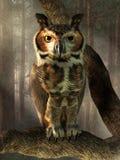 stor horned owl stock illustrationer