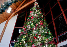 Stor inomhus dekorerad julgran Arkivbilder
