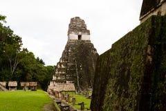 Stor Jaguar tempel, Tikal, Guatemala Fotografering för Bildbyråer