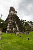 Stor Jaguar tempel, Tikal, Guatemala Royaltyfria Foton