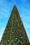Stor julgran i en stad Royaltyfria Bilder