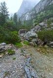 Stor kall dalsommarsikt (höga Tatras, Slovakien) Fotografering för Bildbyråer