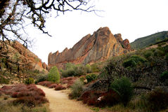 stor klättringrock Royaltyfria Foton