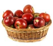 Stor korg av röda äpplen royaltyfria foton