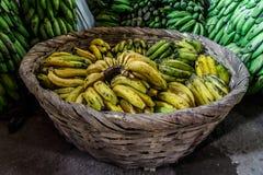 Stor korg med bananer Arkivbilder