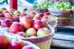 Stor korg mycket av nya lokalt fullvuxna röda äpplen på loen arkivfoton