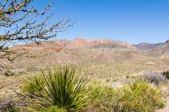 Stor krökningsikt av berg Arkivfoto