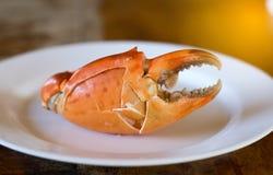 Stor krabba Royaltyfria Bilder