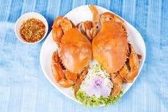Stor krabba för varm ånga Royaltyfria Bilder