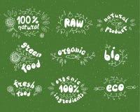 Stor kvalitets- etikett ny 100%, bio, organiskt, ecomat Rå grön produkt Vektoruppsättning av sunda etiketter för organisk mat stock illustrationer