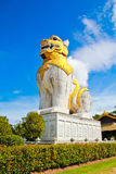 stor lion Fotografering för Bildbyråer