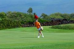stor modig golfö Arkivfoto