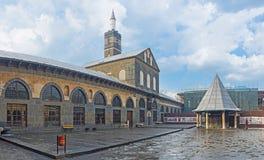 stor moské Royaltyfri Foto
