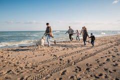 stor multigenerational familj som kör med den labrador hunden på stranden arkivfoto