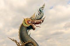 Stor naga eller setpent på himmel med molnet royaltyfri fotografi