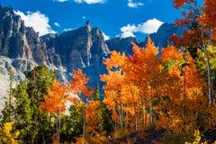 stor nationalpark för handfat Royaltyfria Bilder