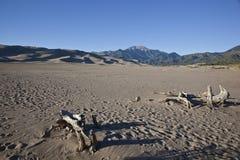stor nationalparksand för dyner Arkivfoto
