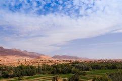 Stor oas i Tineghir, Marocko arkivbilder
