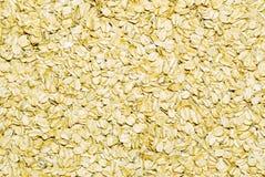 stor oatmeal för flake arkivbilder